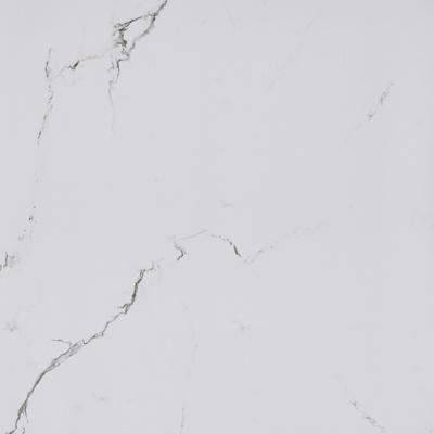 White Matt Porcelain Tile, Item KG6P02T KG6P02M