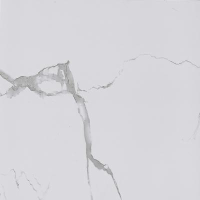 White Matt Porcelain Tile, Item KG6P81T KG6P81M